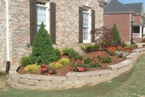 cheap landscaping ideas