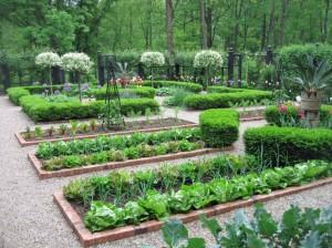garden layout ideas