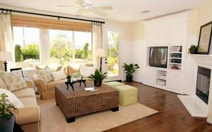ideas for living room design