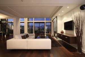 apartment living room ideas