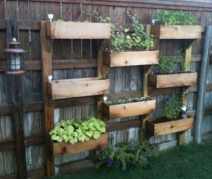vertical vegetable garden