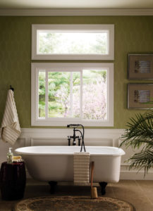 bathroom with window decor